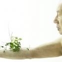 植物メイク
