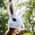 ウサギのかぶりもの